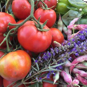 Local Produce From Karaova